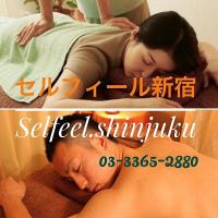 13104セルフィール新宿