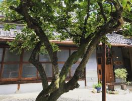 ずっと空き家だったひいばあちゃん家を改装...香川県善通寺市木徳町の古民家カフェ『穐の実』