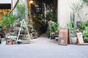 【 ルートブックス 】ブックカフェ(東京都台東区)