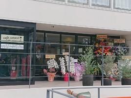 祝!9/5~プレopen『カフェ コロッチ』(大阪府豊中市)