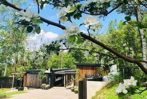おもてなしの庭...北海道上川郡上川町字菊水の「大雪 森のガーデン」