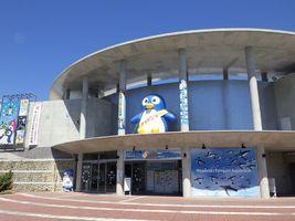 世界で一番ペンギンの種類が多いところ...長崎県長崎市宿町の「長崎ペンギン水族館」