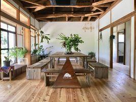 ブルーベリー、生姜、レモンを栽培...長崎県諫早市小長井町田原の「のんびり山」