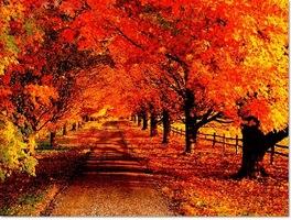 本日10月24日土曜日のご予定はいかがですか?