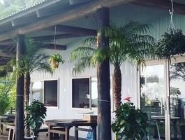海の見えるショップ&カフェレストラン...長崎県雲仙市小浜町富津に「温蒸素味」7/23オープン