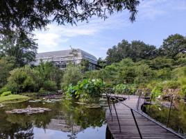 牧野富太郎博士の業績を顕彰する施設...高知県高知市五台山の「高知県立牧野植物園」
