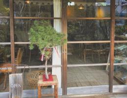 今年10年の歳月を迎えた古民家cafe。。神奈川県鎌倉市山ノ内の『喫茶ミンカ』