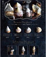 祝!7/7open『糖罪薫』冷やしクリームドーナツ専門店(愛知県名古屋市中区)