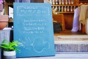 目に見えない生き物も愛して。。広島県尾道市土堂1丁目の『オーガニックストア ツチノコ』