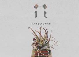 【 花のあるくらし研究所 】花屋(静岡市葵区)3/28オープン