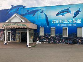 見て・ふれて・楽しく学べる...福井県坂井市三国町崎の「越前松島水族館」