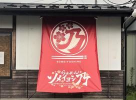 宮城県柴田郡柴田町船岡清住町に「らぁめんソメイヨシ乃」が本日グランドオープンされたようです。