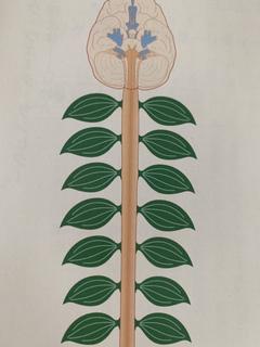 ホロスコープ(東洋占星術)