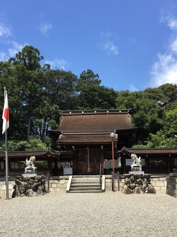 大宝神社は栗東駅から徒歩約5分、宝くじにご利益がありそうな名前の神社です。<br />大きなクスノキもあって、禍から守ってもらえそうな気がします。 ()
