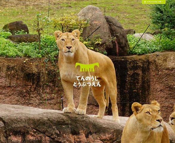 """<p>天王寺動物園で夏のナイトZOOを開催します!~この星で生きるみんなで夕涼み~</p> <p> 天王寺動物園では、毎回ご好評いただいている夏のナイトZOOを令和元年8月10日(土曜日)から15日(木曜日)まで開催。<br /> 普段は見ることができない動物たちの夜の姿を見ていただき、動物の生態をより深く理解していただくことができるイベントです。</p><div class=""""thumnail post_thumb""""><a href=""""""""><h3 class=""""sitetitle""""></h3><p class=""""description""""></p></a></div> ()"""