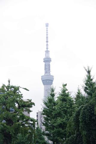 "<p>7月15日(月)東京出張</p> <p>浅草散策を自由時間に!</p> <p>浅草寺からスカイツリーも眺められ嬉しかったです!</p><div class=""thumnail post_thumb""><a href=""""><h3 class=""sitetitle""></h3><p class=""description""></p></a></div> ()"