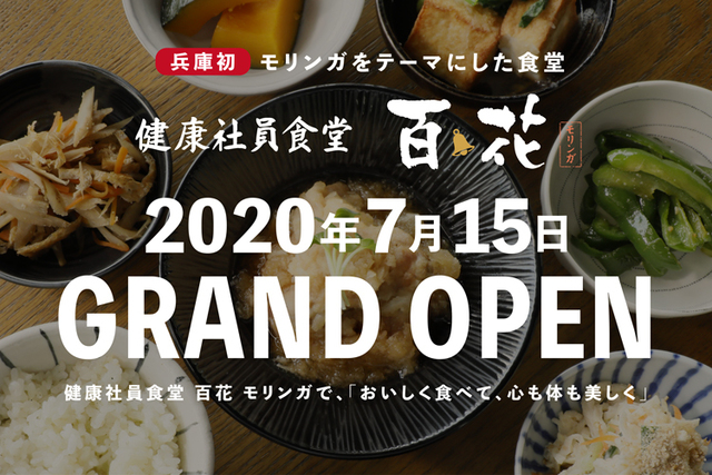 "<p>「健康社員食堂 百花(モリンガ)」7/15グランドオープン</p> <p>牛カツ定食、健康カレーおばんざい定食など</p> <p>おいしく食べて、心も体も美しく...</p> <p>https://himeji-moringa.com/restaurant/</p> <p>https://www.instagram.com/himejimoringa/</p> <div class=""news_area is_type01""> <div class=""thumnail""><a href=""https://himeji-moringa.com/restaurant/""> <div class=""image""><img src=""https://himeji-moringa.com/wp/wp-content/uploads/nutrients_000.jpg"" /></div> <div class=""text""> <h3 class=""sitetitle"">健康社員食堂 百花(モリンガ)【公式】   モリンガを食べる   姫路百花 姫路モリンガ【公式】</h3> <p class=""description"">健康社員食堂 百花(モリンガ)では姫路モリンガを使用した料理をご提供。豊富な栄養素を含むモリンガで健康な食生活を。「おいしく食べて、心も体も美しく」。</p> </div> </a></div> </div> ()"
