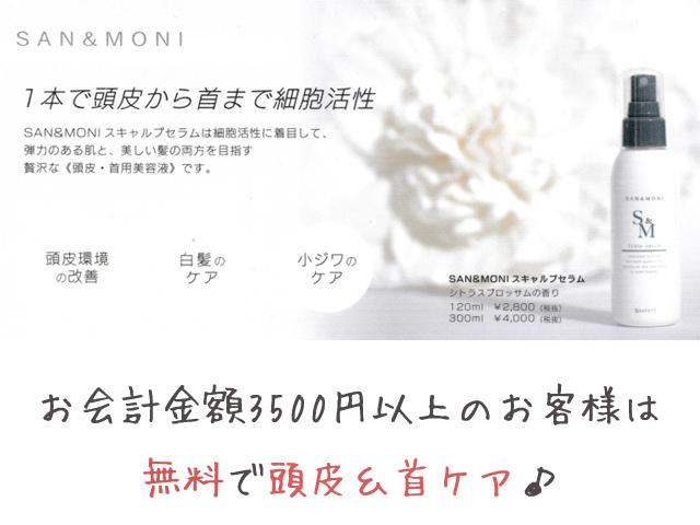"""<p>5月のキャンペーンは<br /><br /> お会計金額3500円以上のお客様に<br /><br />SAN&MONI(サンモニ)「スキャルプセラム」で頭皮と首のケアを無料<br /><br />でさせていただきます♪<br /><br /><br />白髪ケア、小じわケア、ニオイケアが出来る贅沢な「頭皮・首用美容液」です!</p> <div class=""""thumnail post_thumb""""> <h3 class=""""sitetitle""""></h3> </div><div class=""""thumnail post_thumb""""><a href=""""""""><h3 class=""""sitetitle""""></h3><p class=""""description""""></p></a></div> ()"""