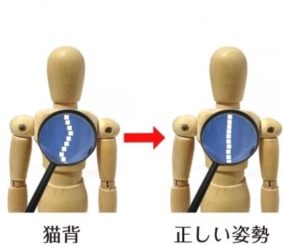 """<span style=""""caret-color: #4d4d4d; color: #4d4d4d; font-family: 'ヒラギノ角ゴ Pro W3', 'MS Pゴシック', 'Hiragino Kaku Gothic Pro', 'MS PGothic', sans-serif; font-size: 12px;"""">皆様、お元気ですか?</span><br style=""""caret-color: #4d4d4d; color: #4d4d4d; font-family: 'ヒラギノ角ゴ Pro W3', 'MS Pゴシック', 'Hiragino Kaku Gothic Pro', 'MS PGothic', sans-serif; font-size: 12px;"""" /><span style=""""caret-color: #4d4d4d; color: #4d4d4d; font-family: 'ヒラギノ角ゴ Pro W3', 'MS Pゴシック', 'Hiragino Kaku Gothic Pro', 'MS PGothic', sans-serif; font-size: 12px;"""">夜や、朝方、少し寒さを感じるようになってきました!</span><br style=""""caret-color: #4d4d4d; color: #4d4d4d; font-family: 'ヒラギノ角ゴ Pro W3', 'MS Pゴシック', 'Hiragino Kaku Gothic Pro', 'MS PGothic', sans-serif; font-size: 12px;"""" /><span style=""""caret-color: #4d4d4d; color: #4d4d4d; font-family: 'ヒラギノ角ゴ Pro W3', 'MS Pゴシック', 'Hiragino Kaku Gothic Pro', 'MS PGothic', sans-serif; font-size: 12px;"""">過ごしやすくていいですね!</span><br style=""""caret-color: #4d4d4d; color: #4d4d4d; font-family: 'ヒラギノ角ゴ Pro W3', 'MS Pゴシック', 'Hiragino Kaku Gothic Pro', 'MS PGothic', sans-serif; font-size: 12px;"""" /><br style=""""caret-color: #4d4d4d; color: #4d4d4d; font-family: 'ヒラギノ角ゴ Pro W3', 'MS Pゴシック', 'Hiragino Kaku Gothic Pro', 'MS PGothic', sans-serif; font-size: 12px;"""" /><span style=""""caret-color: #4d4d4d; color: #4d4d4d; font-family: 'ヒラギノ角ゴ Pro W3', 'MS Pゴシック', 'Hiragino Kaku Gothic Pro', 'MS PGothic', sans-serif; font-size: 12px;"""">ところで、皆様の中で猫背や反り腰を気にされている方はいませんか?</span><br style=""""caret-color: #4d4d4d; color: #4d4d4d; font-family: 'ヒラギノ角ゴ Pro W3', 'MS Pゴシック', 'Hiragino Kaku Gothic Pro', 'MS PGothic', sans-serif; font-size: 12px;"""" /><br style=""""caret-color: #4d4d4d; color: #4d4d4d; font-family: 'ヒラギノ角ゴ Pro W3', 'MS Pゴシック', 'Hiragino Kaku Gothic Pro', 'MS PGothic', sans-serif; font-size: 12px;"""" /><span style=""""caret-color: #4d4d4d; color: #4d4d4d; font-family: 'ヒラギノ角ゴ Pro W3', 'MS Pゴシック', 'Hiragino Kaku Gothic Pro', 'MS PGothic', sans-serif; font-size: 12px;"""">猫背とは、背中が丸くなり、身体が前かがみになった状態のことです。</span><br style=""""caret-color: #4d4d4d; color"""