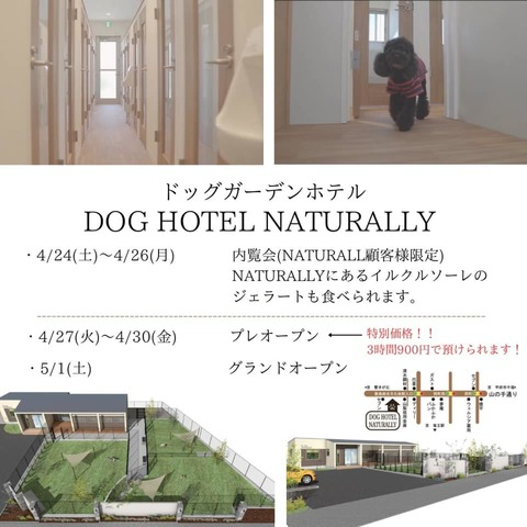 """<div>『DOG HOTEL NATURALLY』</div> <div>開放感のある特別なガーデンを3つ完備した</div> <div>大型ドッグラン付きドッグホテル。</div> <div>山梨県甲斐市中下条626-1</div> <div>https://www.hotel-naturally.com/</div> <div>https://www.instagram.com/doghotel_naturally/</div> <div><iframe src=""""https://www.facebook.com/plugins/post.php?href=https%3A%2F%2Fwww.facebook.com%2Fdoghotel.NATURALLY%2Fposts%2F120905523427539&width=500&show_text=true&height=689&appId"""" width=""""500"""" height=""""689"""" style=""""border: none; overflow: hidden;"""" scrolling=""""no"""" frameborder=""""0"""" allowfullscreen=""""true"""" allow=""""autoplay; clipboard-write; encrypted-media; picture-in-picture; web-share""""></iframe></div> <div class=""""news_area is_type01""""> <div class=""""thumnail""""><a href=""""https://www.hotel-naturally.com/""""> <div class=""""text""""> <h3 class=""""sitetitle"""">ホーム 