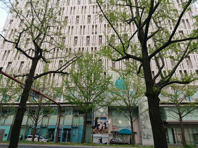 <p>ウィリアム・メレル・ヴォーリズが手がけた</p> <p>昭和8年完成の御堂筋側の外壁を現在の位置で保存</p> <p>2019年秋完成予定で工事中の大丸心斎橋店本館(写真2枚目)</p> <p>現在営業中の北館(写真1枚目)には本館完成後「パルコ」が出店するという</p> <p>完成がとても楽しみですね。</p> <p>hara<br /><br /></p> ()