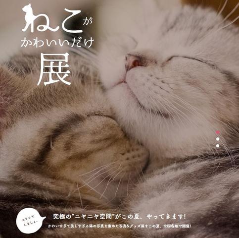 """<p>それは、猫好きによる猫好きのための究極の""""ニヤニヤ空間""""。<br />全国から集まった""""たまらん""""猫写真などを多数展示します。<br />暑い毎日、忙しい毎日、疲れる毎日。<br />この展覧会はあなたの心の肉球になります。</p><div class=""""thumnail post_thumb""""><a href=""""""""><h3 class=""""sitetitle""""></h3><p class=""""description""""></p></a></div> ()"""