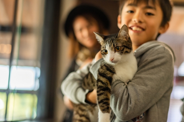 """<p>【 Catton 】ジュエリー工場&ショップ<br /><br />熊本県荒尾市万田725-1<br /><br />猫好きデザイナーが立ち上げた、猫をモチーフにしたネコ好きのためのジュエリーブランドの実店舗は、保護猫たちとの出会いの場を併設。利益の一部は保護猫の飼育や医療活動にあてられる。</p> <p>https://goo.gl/iCgCPL</p><div class=""""news_area is_type01""""><div class=""""thumnail""""><a href=""""https://goo.gl/iCgCPL""""><div class=""""image""""><img src=""""https://scontent-nrt1-1.cdninstagram.com/vp/640d799e3d23368b04a9bb186be3faa3/5D1BB782/t51.2885-15/e35/43721662_289652858317959_7546456092700779495_n.jpg?_nc_ht=scontent-nrt1-1.cdninstagram.com""""></div><div class=""""text""""><h3 class=""""sitetitle"""">Catton on Instagram: """"日本初!猫の譲渡ができるジュエリーショップ『Catton』 10/27(土)11:00 熊本県荒尾市にオープン!! 『Catton』(きゃっとん)は、ジュエリー作りの全ての工程がみれる オープン型ジュエリー工場です。  ただのジュエリーショップではありません!…""""</h3><p class=""""description"""">14 Likes, 0 Comments - Catton (@catton1020) on Instagram: """"日本初!猫の譲渡ができるジュエリーショップ『Catton』 10/27(土)11:00 熊本県荒尾市にオープン!! 『Catton』(きゃっとん)は、ジュエリー作りの全ての工程がみれる…""""</p></div></a></div></div> ()"""